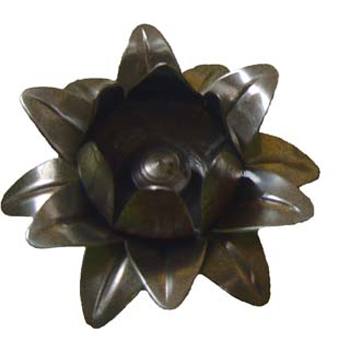 Flor N1