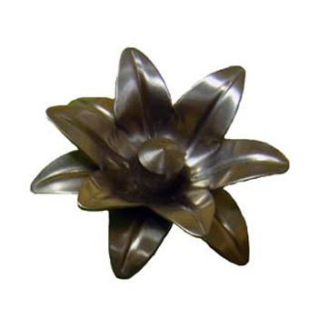 Flor N2